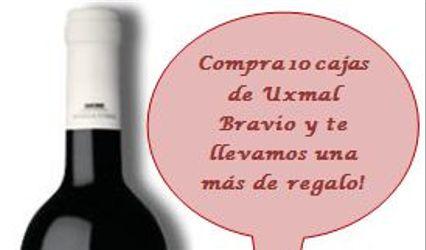 Vinos Tintillo Argentino 3