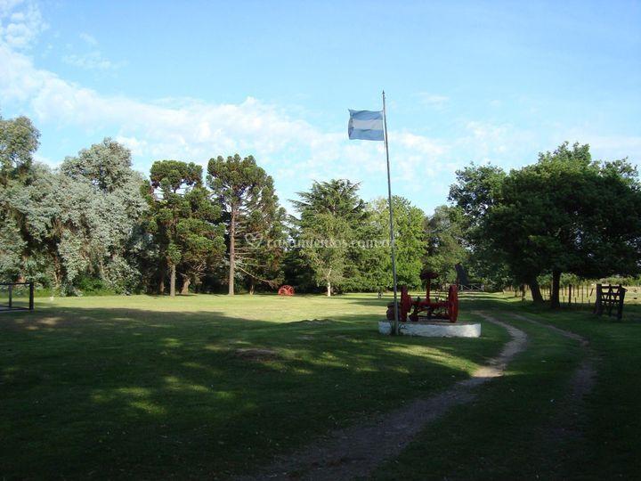 Parque y arboleda