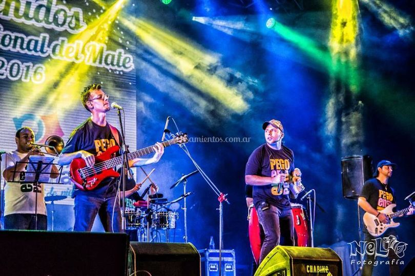 La banda en vivo