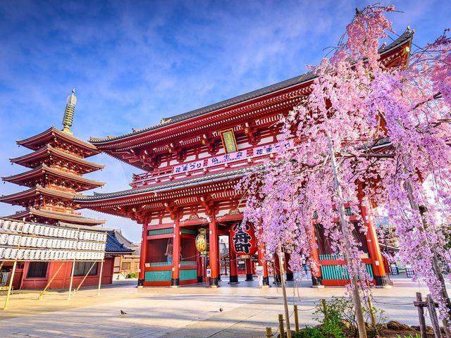 20 cosas que no olvidarán si la luna de miel es en Japón
