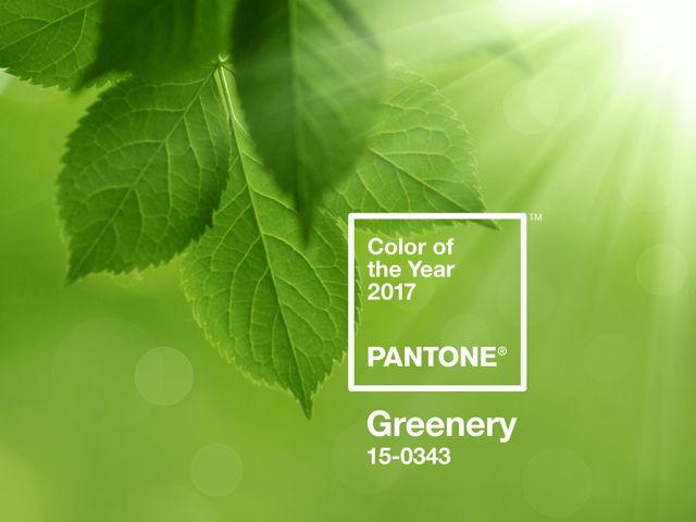Descubrí el color Pantone en tendencia del 2017