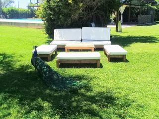 Eco Lounge 3