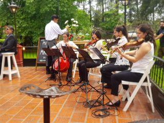 Cuarteto de Cuerdas Quillén 2