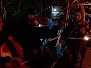 Cuarteto de Cuerdas Auguri 5