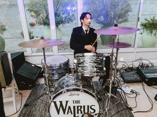 The Walrus Banda Beatle 1