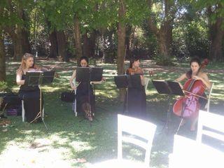 Cuarteto de Cuerdas Auguri 1