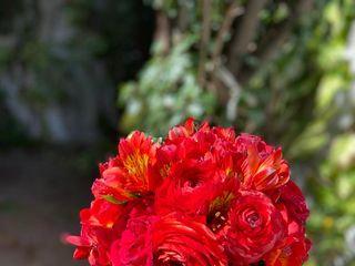 Yulisa Flowers 4
