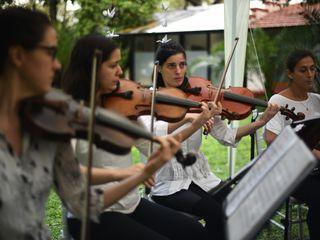 Cuarteto de Cuerdas Quillén 5