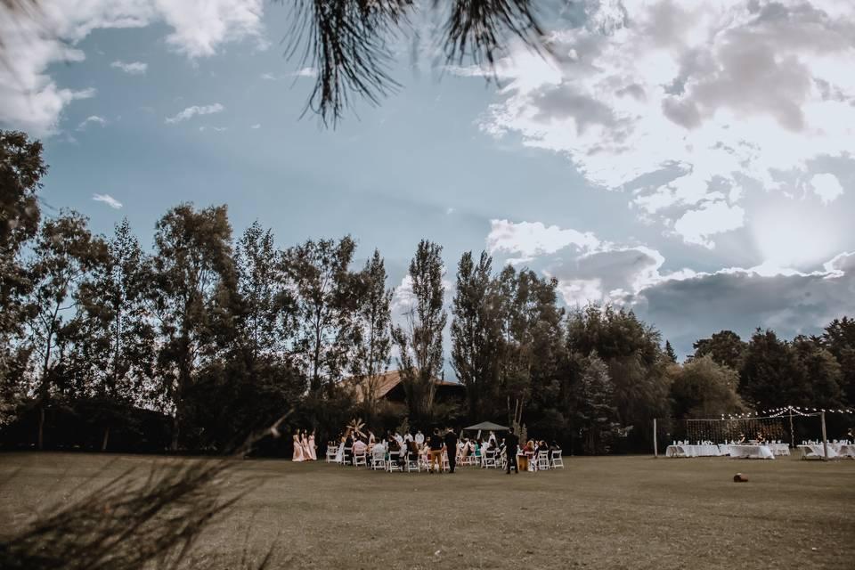 Campo Naranjo 4