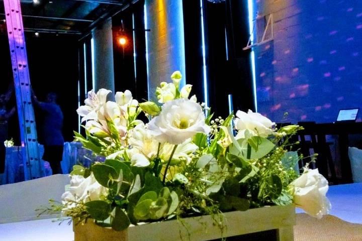 Flores Jess 16