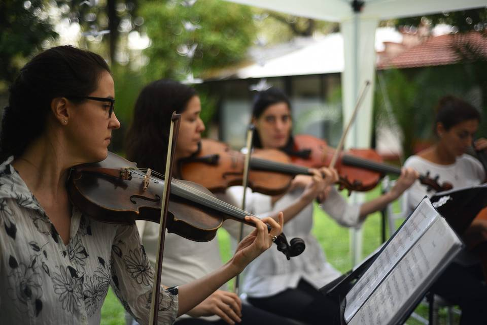 Cuarteto de Cuerdas Quillén 7
