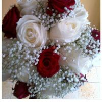 Sofi - mi casamiento en tres imágenes - 1