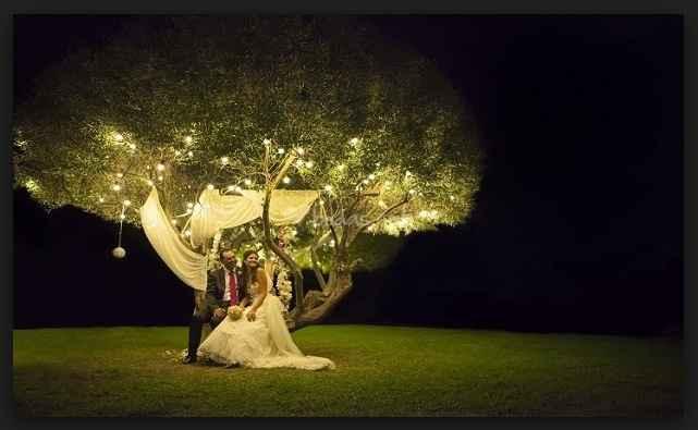 Mi Casamiento.