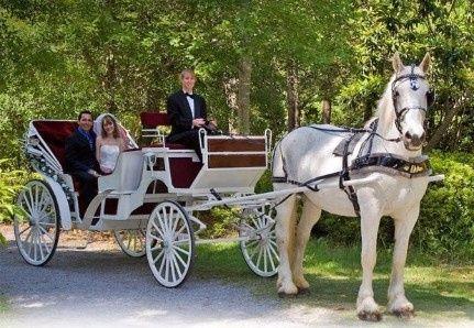 ¿Qué Transporte elegís según tu Fecha de Casamiento? 3