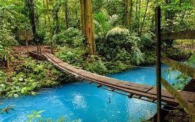Habemus Luna de Miel! Costa Rica! Pura Vida! 3