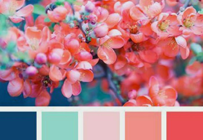 ¿Los colores de la boda serán? 6