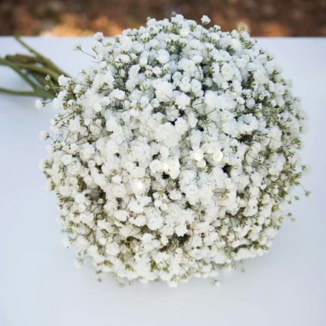 Que flores se considerarían estilo vintage? 6