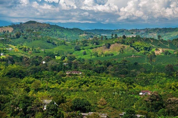 Luna de Miel en Colombia: 10 destinos 2