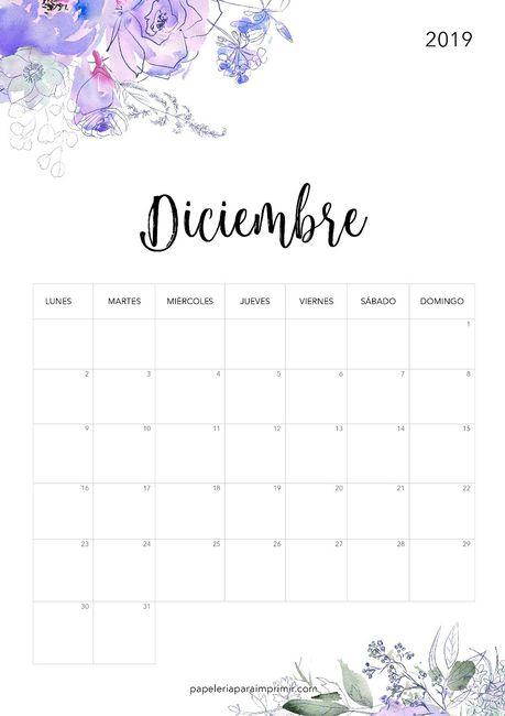 Novias Diciembre 2019, digan presente 1