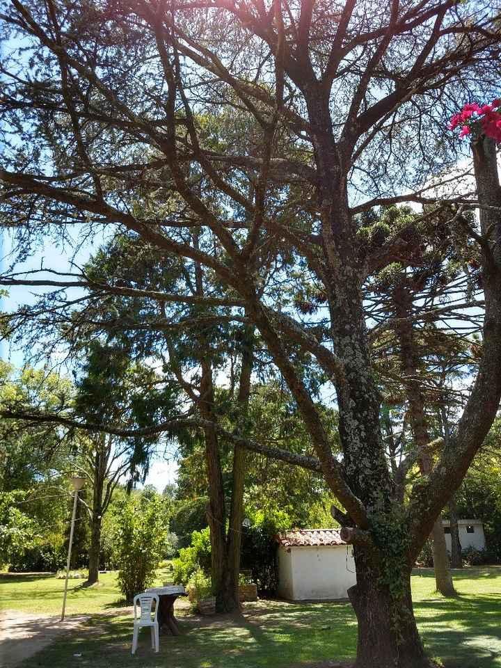 Natalia + Quinta el parque y Aly Caprino, Buenos Aires. - 3