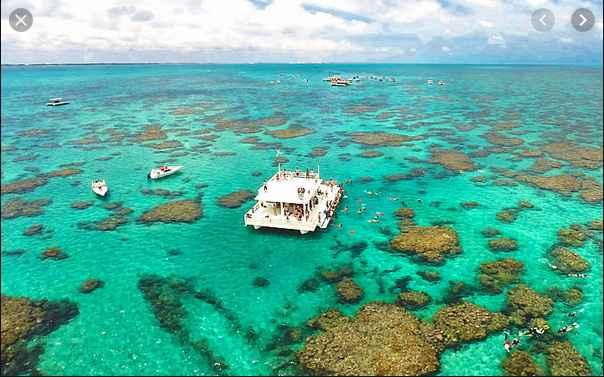 Aca te llevan a hacer snorkel, es una plataforma en medio de los corales donde podes picar algo y de