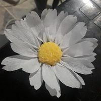 Flores de papel o naturales... - 1