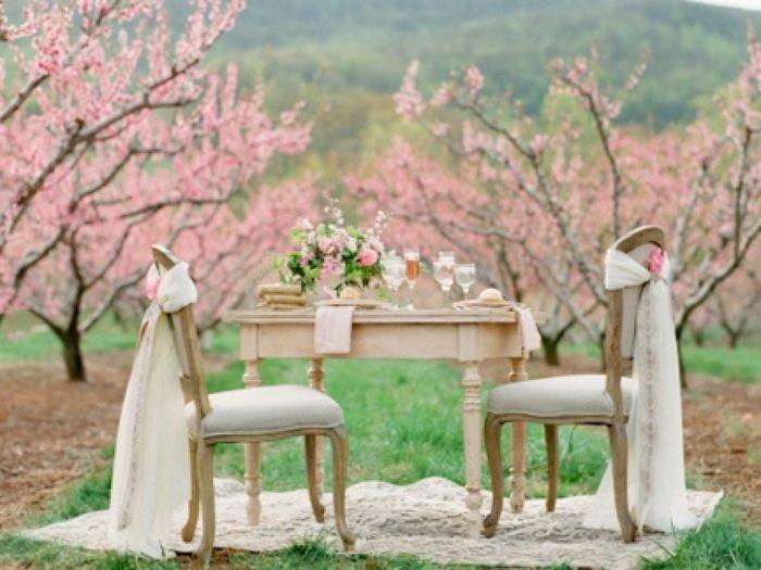 5 Ideas para que el cerezo sea la flor de tu casamiento 🌸 3