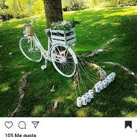 Cami - Mi casamiento en 3 imágenes - 3