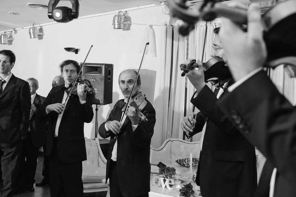 Ronda de violines para vals