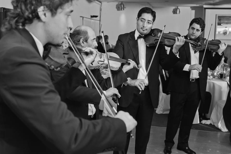 Ronda de violines