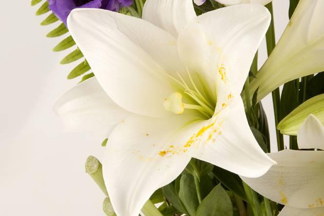 Liliums y lisianthus