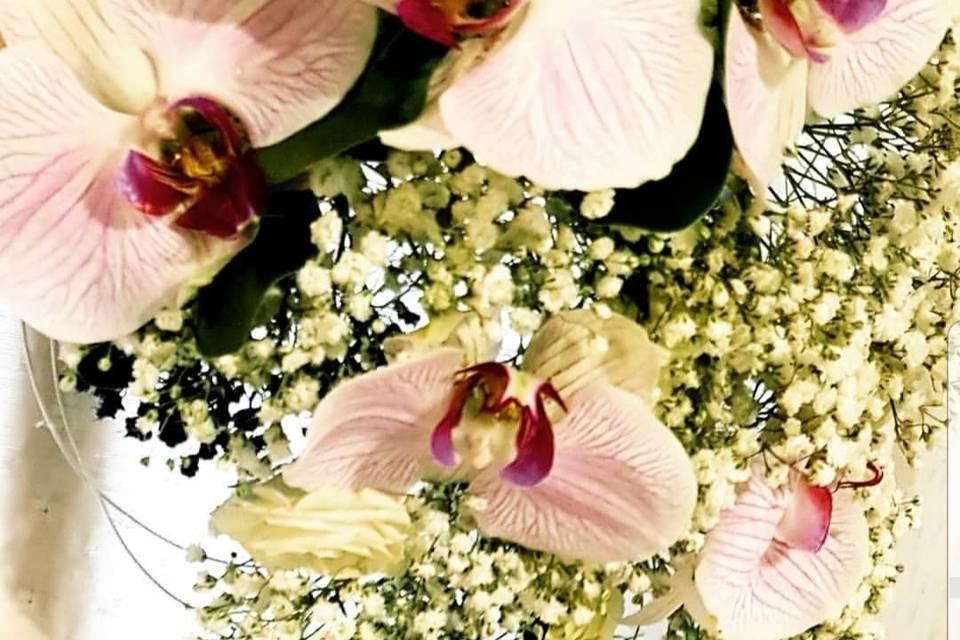Orquideas artesanales