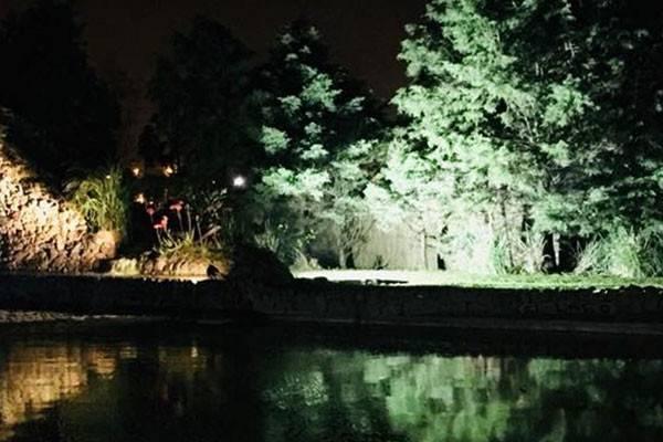 Zebra Lago Eventos