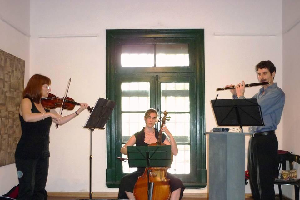 Trío violín, flauta y cello
