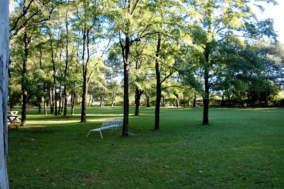 El parque. La naturaleza.