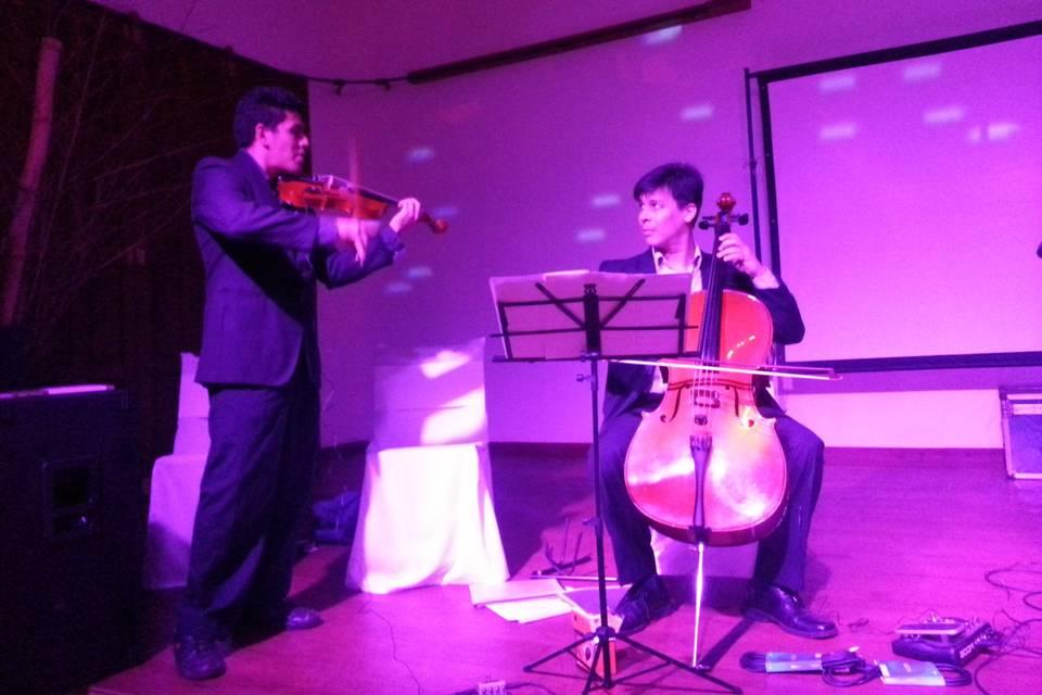 Border Violinista