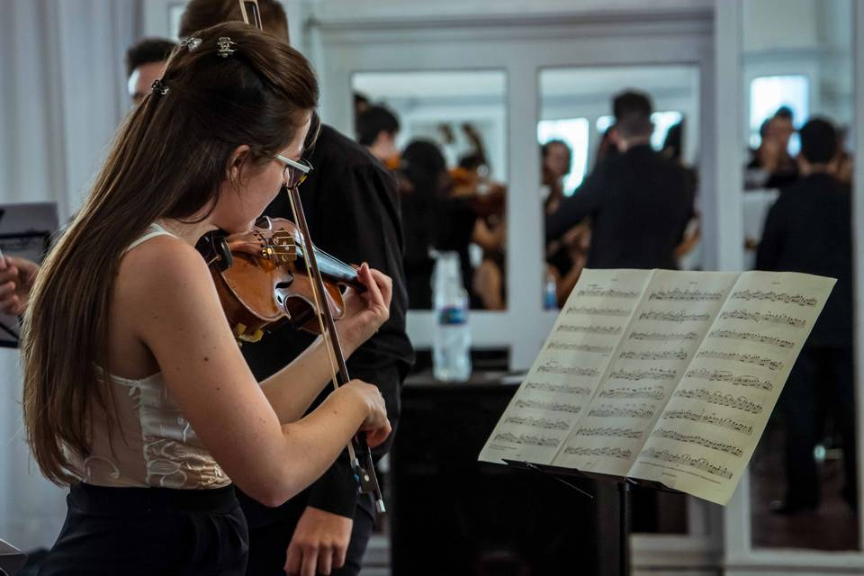 Violinista solista